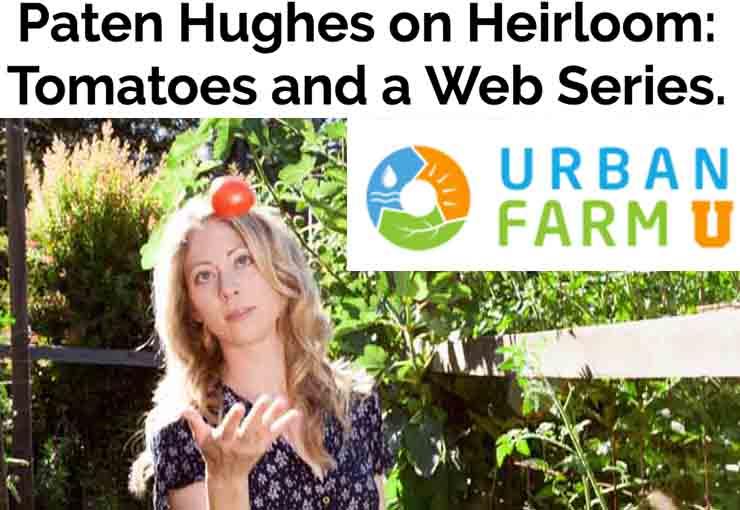 urban farm u